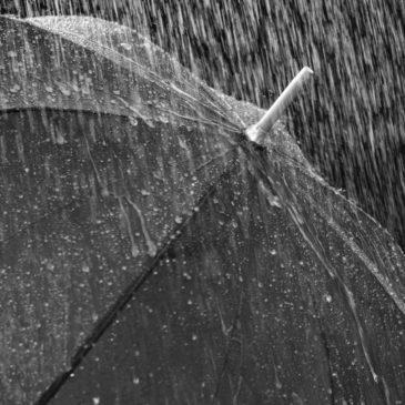 Niederschlagsdaten im Jahresvergleich verfügbar